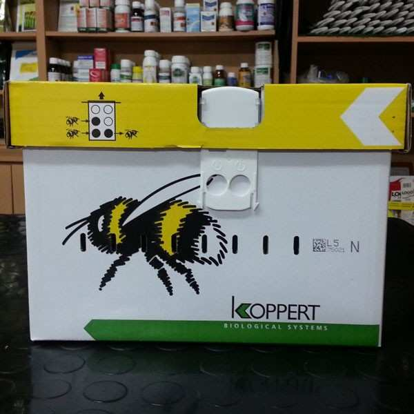 Bondari polenizare NATUPOL N, Koppert , stup