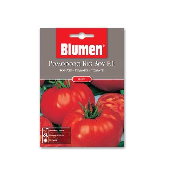 Seminte ROSII BIG BOY F.1 0,2 gr, Blumen