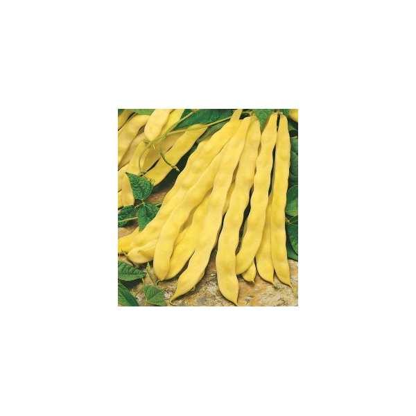 Seminte fasole Maraviglia di Venezia SEMINIS 0.5 kg